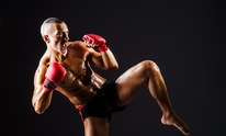 Paulie Ayala's University of Hard Knocks: Martial Arts