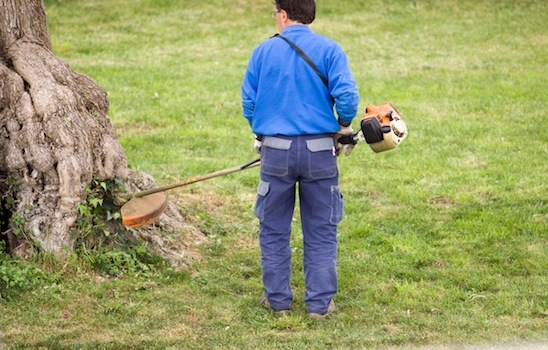 Lawn_mowing_6
