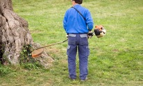 Shepherd's Lawn Mower & Chainsaw Repair Center: Lawn Mowing