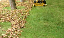 JLP Lawns: Lawn Mowing