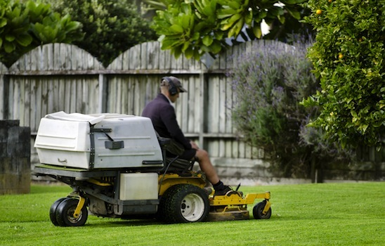 Lawn_mowing_15