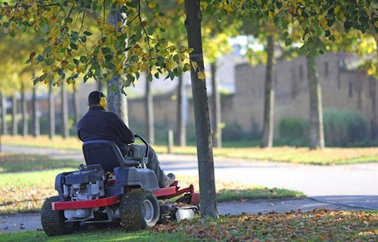Lawn_mowing_13