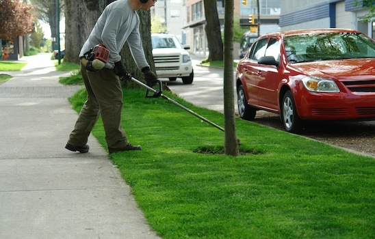 Lawn_mowing_2