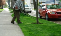 LANDSCAPE CREATIONS & IRRIGATIO: Lawn Mowing