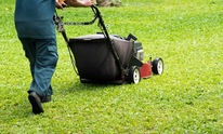 Visione Landscaping Inc: Lawn Mowing