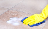 Ace Rug & Furniture Cleaning Co Inc: Housekeeping