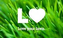 Lawn Love: Lawn Mowing