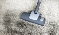 Presley's Steamaction: Carpet Cleaning
