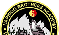 Hapkido Brothers Academy: Martial Arts
