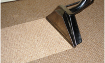 A1 Steam King: Carpet Cleaning