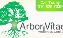 Dr. Magdy Guirguis, Arbor Vitae Wellness: Chiropractic Treatment