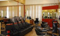 Spa 313 Salon: Haircut