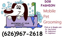 Dog Fashion Mobile Pet Grooming: Dog Grooming