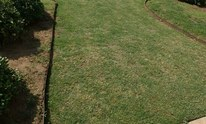 DomainsCare: Lawn Mowing
