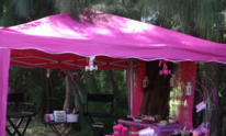 Pink Tiara Events: Mobile Spa Party