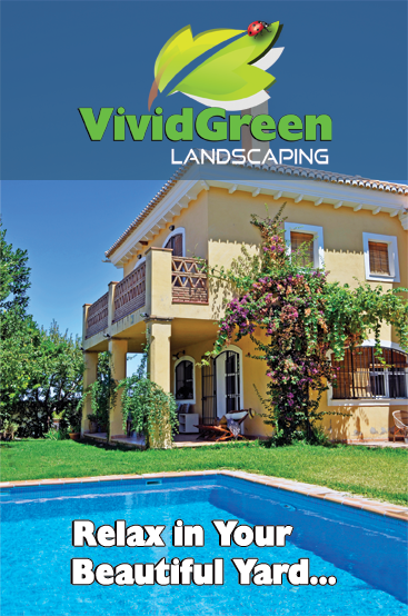 Vivid Green Landscaping West Palm Beach Fl Lawn Mowing