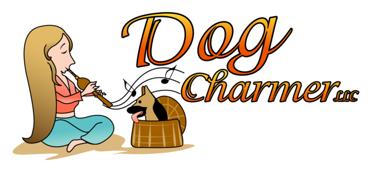 Dogcharmerllcd04ar05bp01zl-jefferson5b