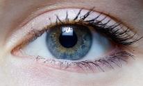 Bespoke Eye Care: Eye Exam