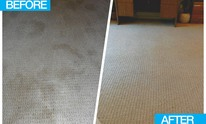 Pro Line Cleaning Services: Upholstery Cleaning
