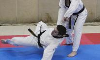 Rouleau's Taekwondo: Martial Arts