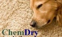 ChemDry By The Butler: Upholstery Cleaning