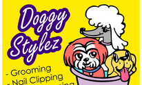 Doggy Stylez Grooming: Cat Grooming