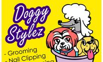 Doggy Stylez Grooming: Dog Grooming