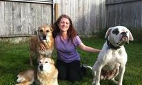 Companion Animal Nanny: Dog Training