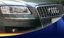Mobile Detailing, LLC: Auto Detailing