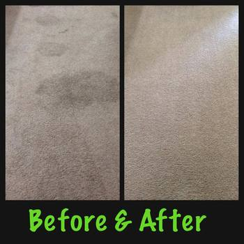 Carpet_cleaning_stain_removal