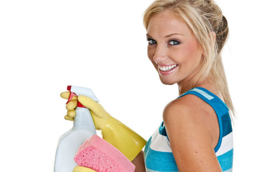 Cleaninglady2