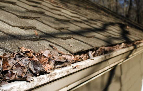Gutter_cleaning_4