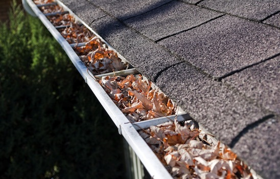 Gutter_cleaning_6