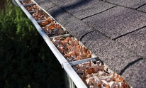 Ron's Home Services: Gutter Cleaning