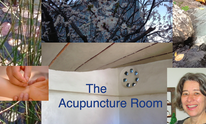 The Acupuncture Room: Body Work