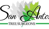 San Antonio Tree Surgeons: tree
