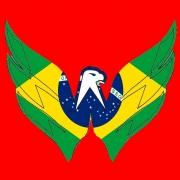 brazilian-goalie
