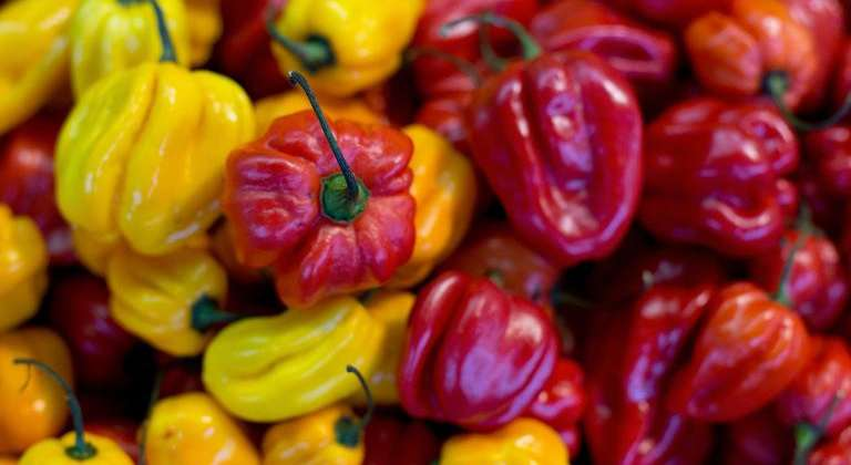 red-yellow-bell-peppers