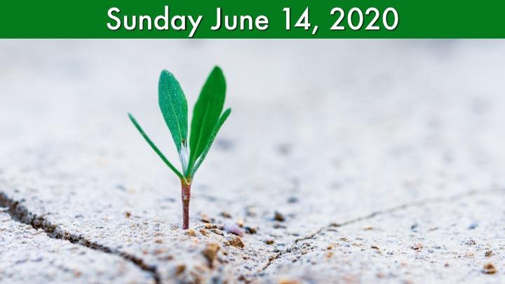 Virtual Worship for June 14 2020