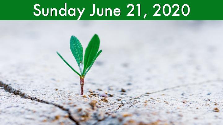 Virtual Worship for Sunday, June 21 2020