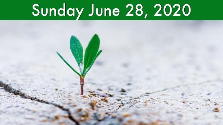 Virtual Worship for June 28, 2020