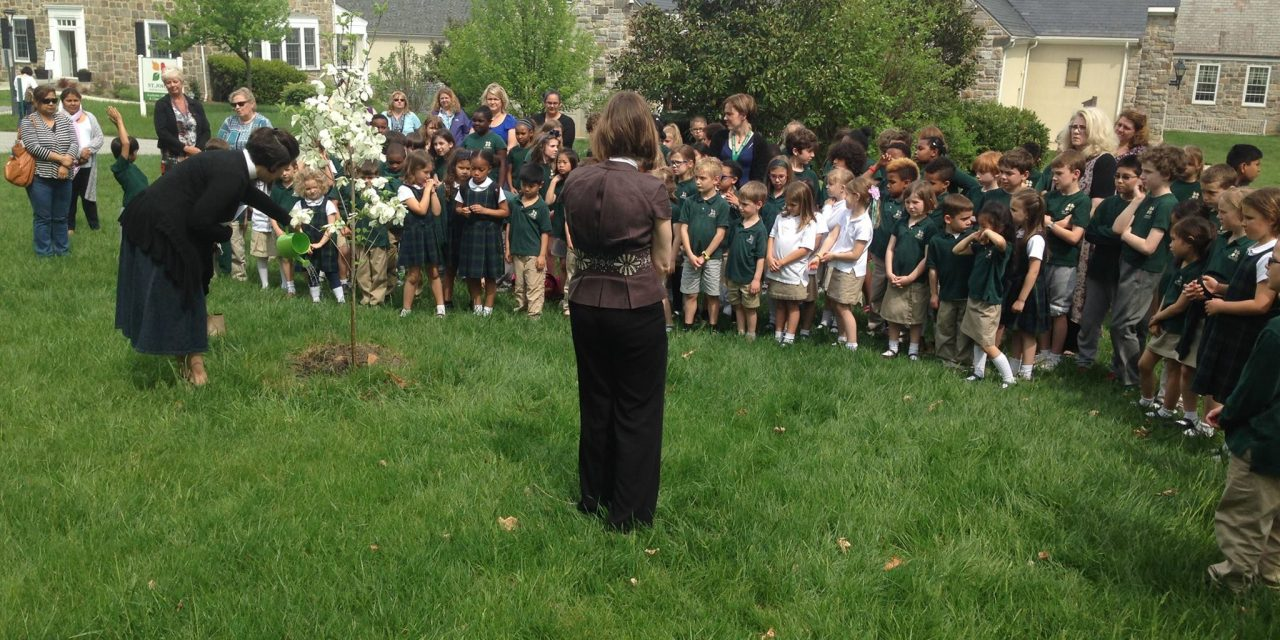 Maryland Episcopal Environmental Partners on forest conservation law