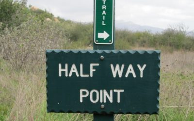 Half Way There