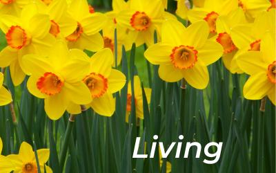 Living Easter