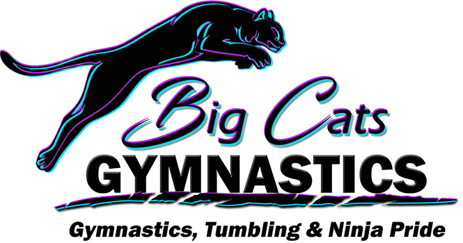 Big Cats Gymnastics
