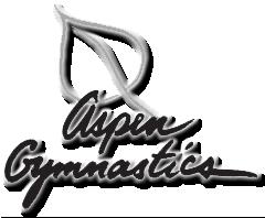 Aspen Gymnastics LLC