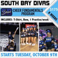 Cheer Fundamentals Program