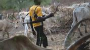 Update: Fulani Herdsmen who kidnapped Catholic Priest in Enugu demand for N2.5 million ransom