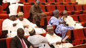 Senate faults BPE's usage of N2tr privatisation proceeds
