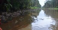 Agip Oil Leak Pollutes Bayelsa Creeks